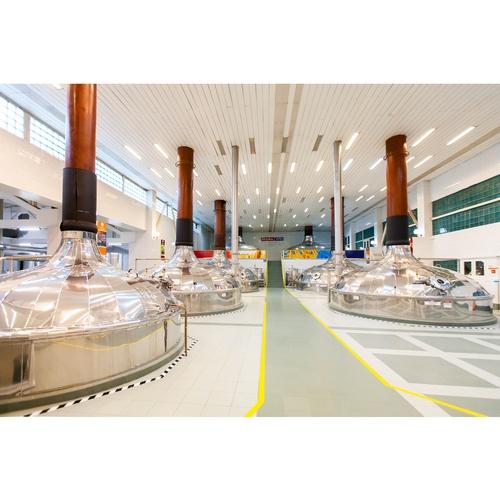 Завод AB InBev Efes в Волжском на час приостановил производство