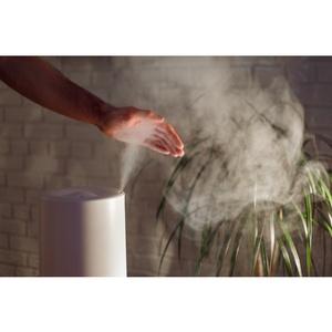 Лайфхак от «Метриум»: Как создать в квартире здоровый микроклимат