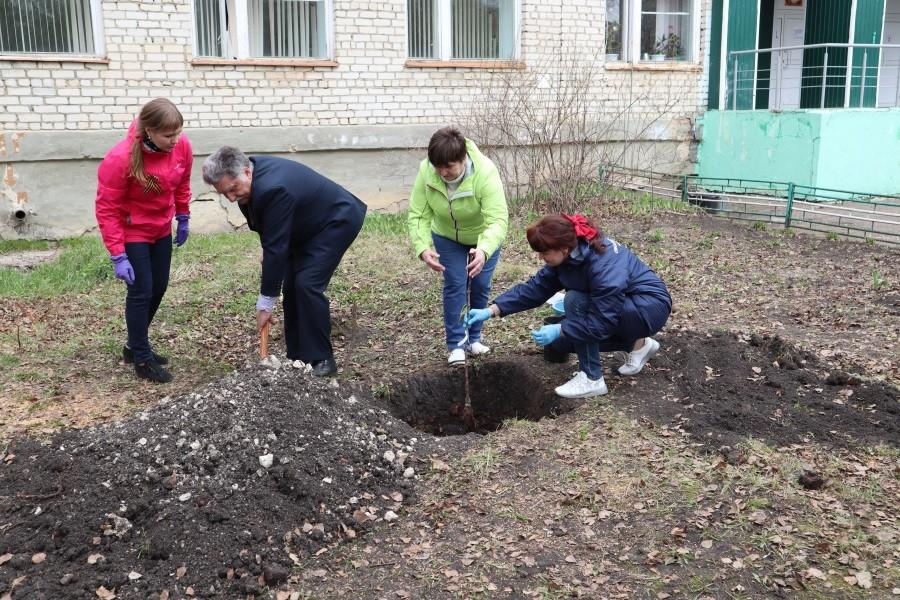 ОНФ в Мордовии помог возродить в Большеелховской школе яблоневый сад
