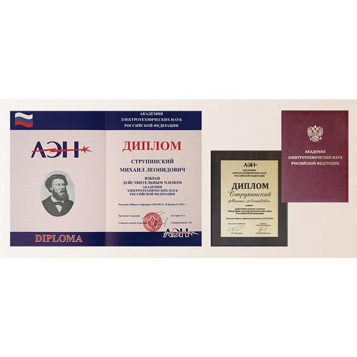 Президент ГК «ССТ» избран действительным членом АЭН РФ