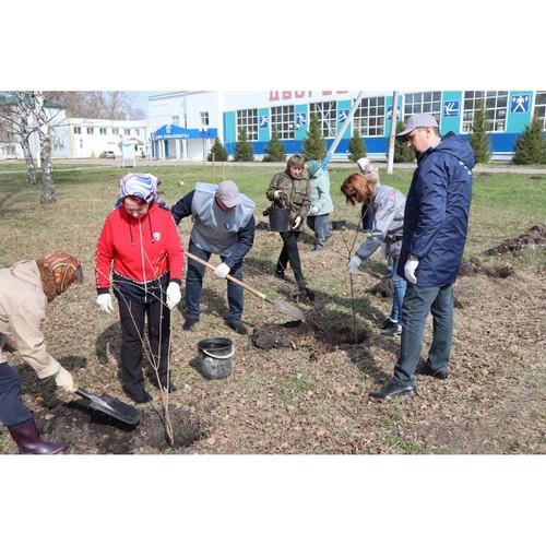 В Мордовии высадили в селе Атемар  30 молодых саженцев