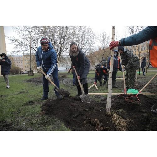 Михаил Романов посадил деревья в Курском сквере в Санкт-Петербурге