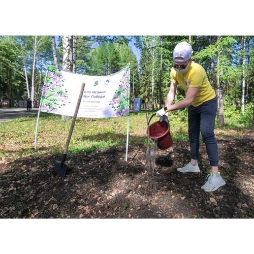 К акции «Сад памяти» в Уфе присоединились корпоративные волонтеры