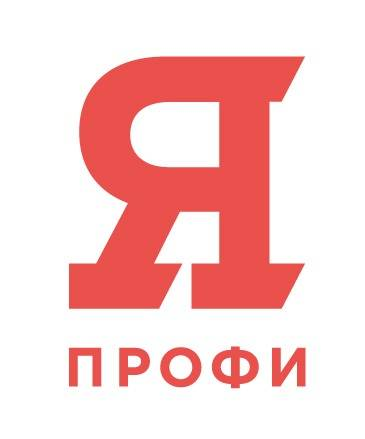 «Бронза» IV олимпиады «Я – профессионал» – у студента ПМФИ