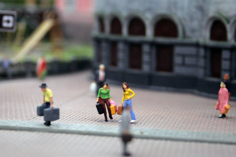 В музее-диораме «Царь-Макет» прошла перепись населения