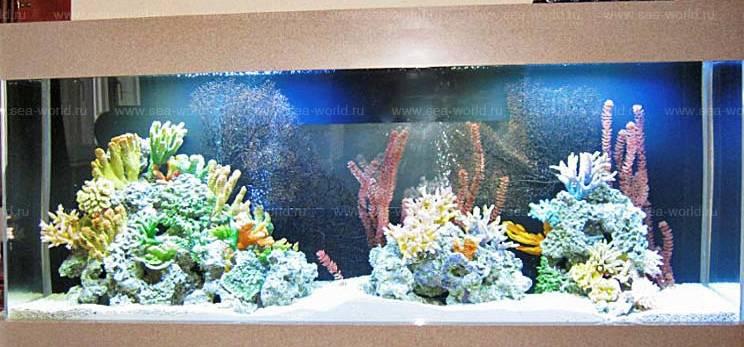 Оформим аквариум