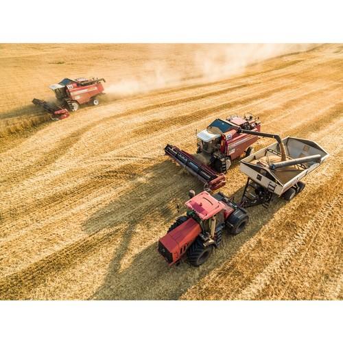 «Дон Агро» запустил пилотный проект по повышению урожайности