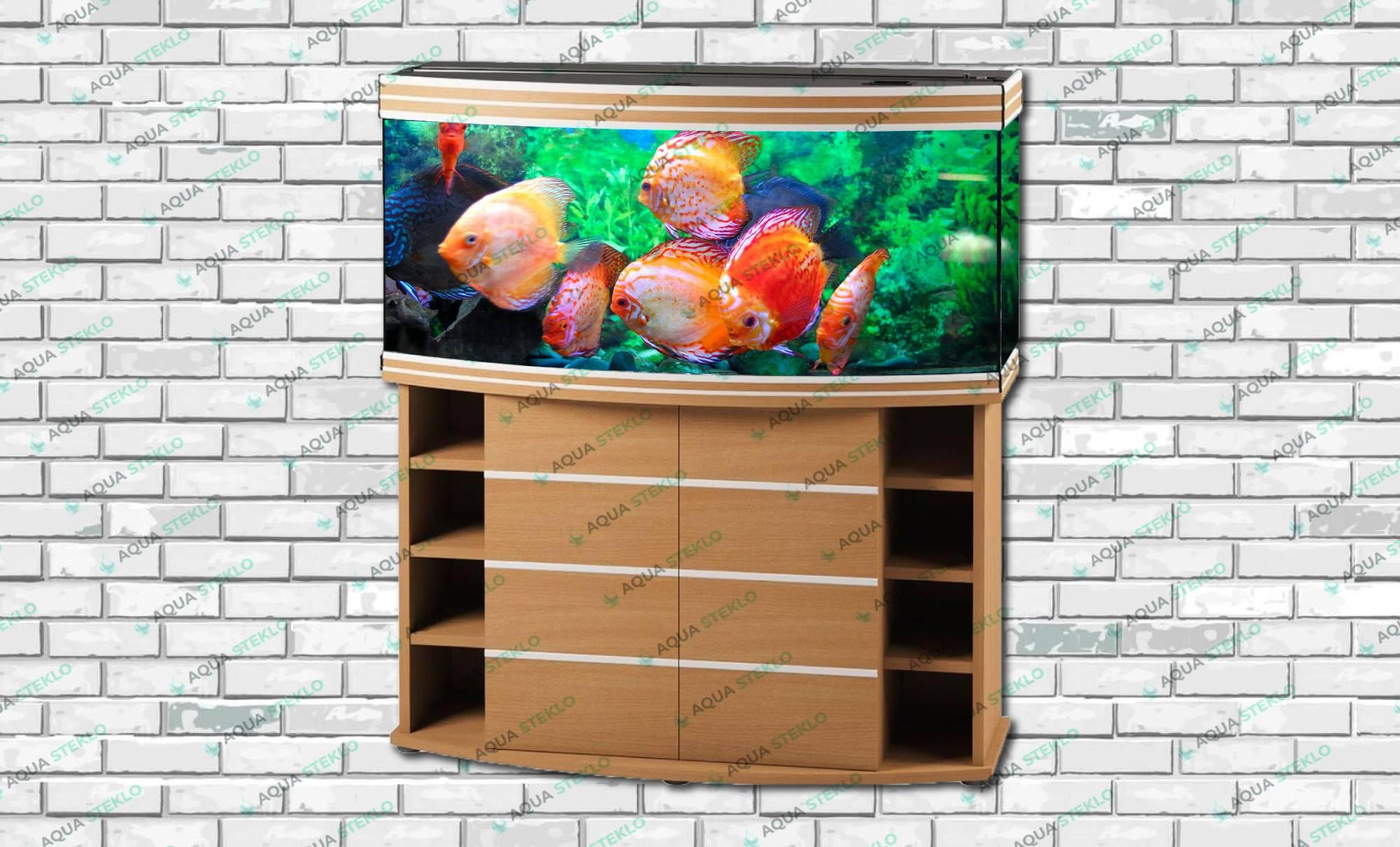 Нужен ли мне дизайнер при заказе аквариума?