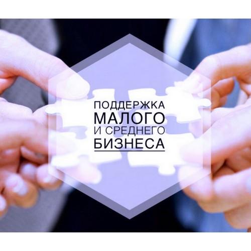 Правительство запустило новую меру господдержки для МСП