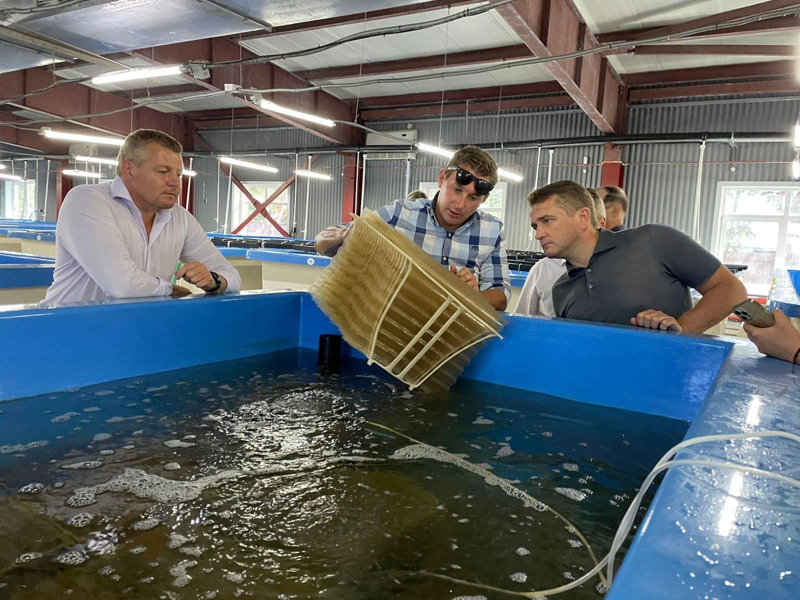 Шаги в научном развитии аквакультуры должны быть поддержаны бизнесом