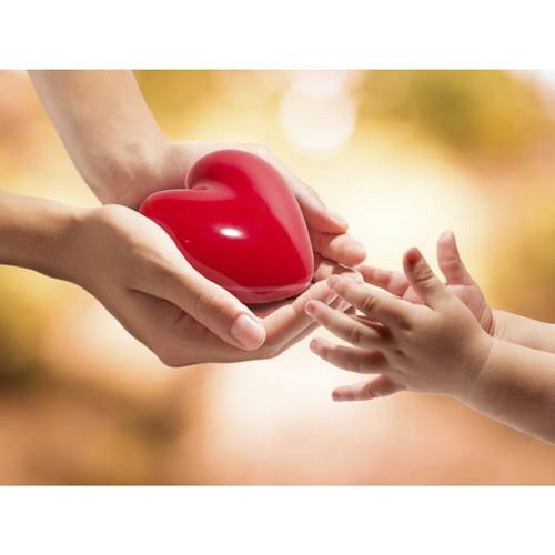 Фонд «Милосердие» расширяет географию доброты