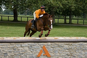 Губернатор Бешар объявил о том, что Всемирные конные игры принесли экономике более 201 миллиона долларов США