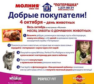 Октябрь - месяц заботы о домашних жвиотных в Челябинске