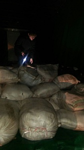 Россиянин поплатится за контрабанду телятины