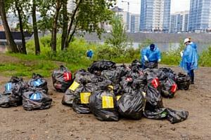 В рамках экологической акции «Семь рек» сотрудники «Балтики» очистили от мусора берег Енисея