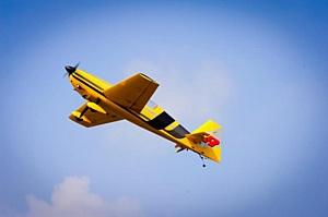 «Мне бы в небо!» — настоящие воздушные приключения в отеле Foresta Festival Park!