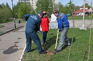 «Аллеи Героев» костромских энергетиков зеленеют по всей области