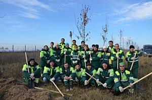 Волонтеры завода «Лафарж» в Ферзиково высадили деревья вдоль пятикилометрового ленточного конвейера