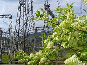 ФСК ЕЭС модернизирует разъединители на сибирских подстанциях