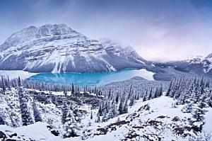 В галерее на Солянке пройдет выставка фотографа Владимира Медведева «Мир скалистых гор»