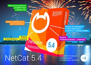 Вышла новая редакция Netcat для e-Commerce
