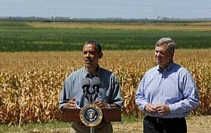 Сельское хозяйство и промышленность в США