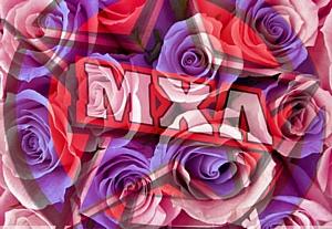 8 марта МХЛ поздравит всех девушек в Парке Горького