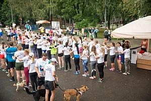 Около 300 человек пробежали пять километров в пользу бездомных животных в Москве