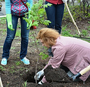 Международный день земли: продуктивный субботник!