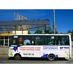«Пегас Туристик» выбирает общественный транспорт