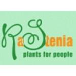 Компания RaStenia выводит на рынок новый продукт – фитостены