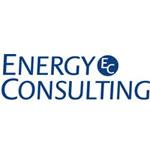 Первая пресс-конференция компании Energy Consulting/Integration