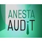 Аудиторская компания «Анеста Аудит» осуществит бухгалтерский учет ООО «КАВАИ КАФУКО»