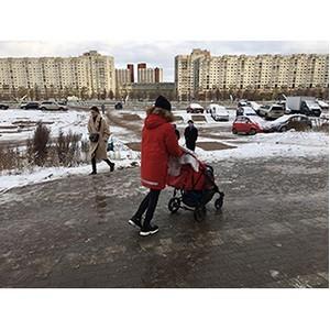 ОНФ подключились к решению проблемы намыва на Васильевском острове