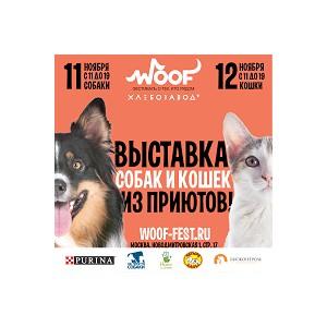 Фестиваль Woof в поддержку животных из приютов состоится 11 и 12 ноября 2017 г