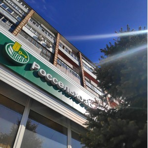 Ульяновский филиал Россельхозбанка выдал первый кредит в режиме онлайн