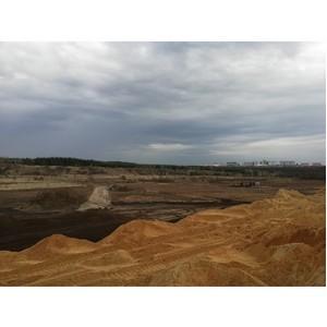 ОНФ просит власти Воронежа остановить вырубку Малышевского леса