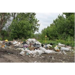 Воронежские активисты ОНФ призвали власти региона решить проблему сбора мусора в селе Першино