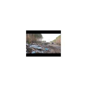 Видео: Томский район обрастает несанкционированными свалками