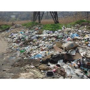 Должностное лицо, отвечающее за сбор и вывоз мусора, привлечено к административной ответственности