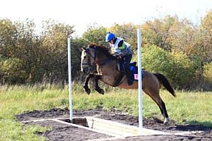 Все инновации в конном туризме в одном месте