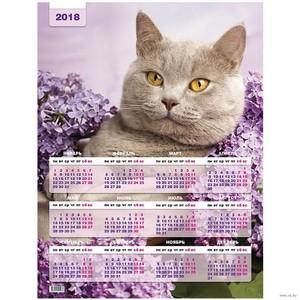 Календари с котиками. В чём секрет успеха?