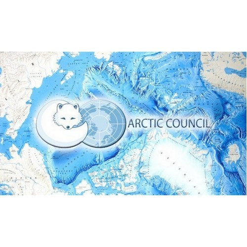 В рамках ПМЭФ состоялось заседание Арктического экономического совета
