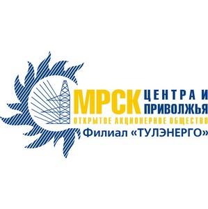 Сотрудникам филиала «Тулэнерго» ОАО «МРСК Центра и Приволжья» вручили отраслевые награды