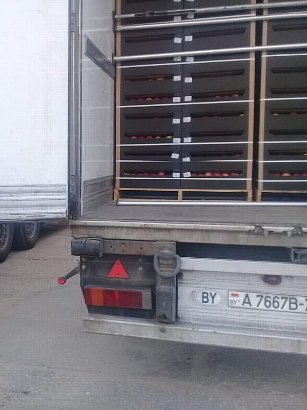 Сорок тонн польских яблок задержано в Смоленской области