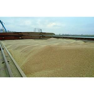В январе через Ростовский речной порт на экспорт ушло около 400 тыс. тонн сельхозгрузов