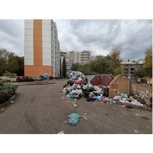 ОНФ просят власти Воронежа привести в порядок две площадки ТКО