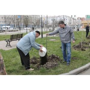 Активисты ОНФ в Чечне приняли участие в акции «Всероссийский день посадки леса»