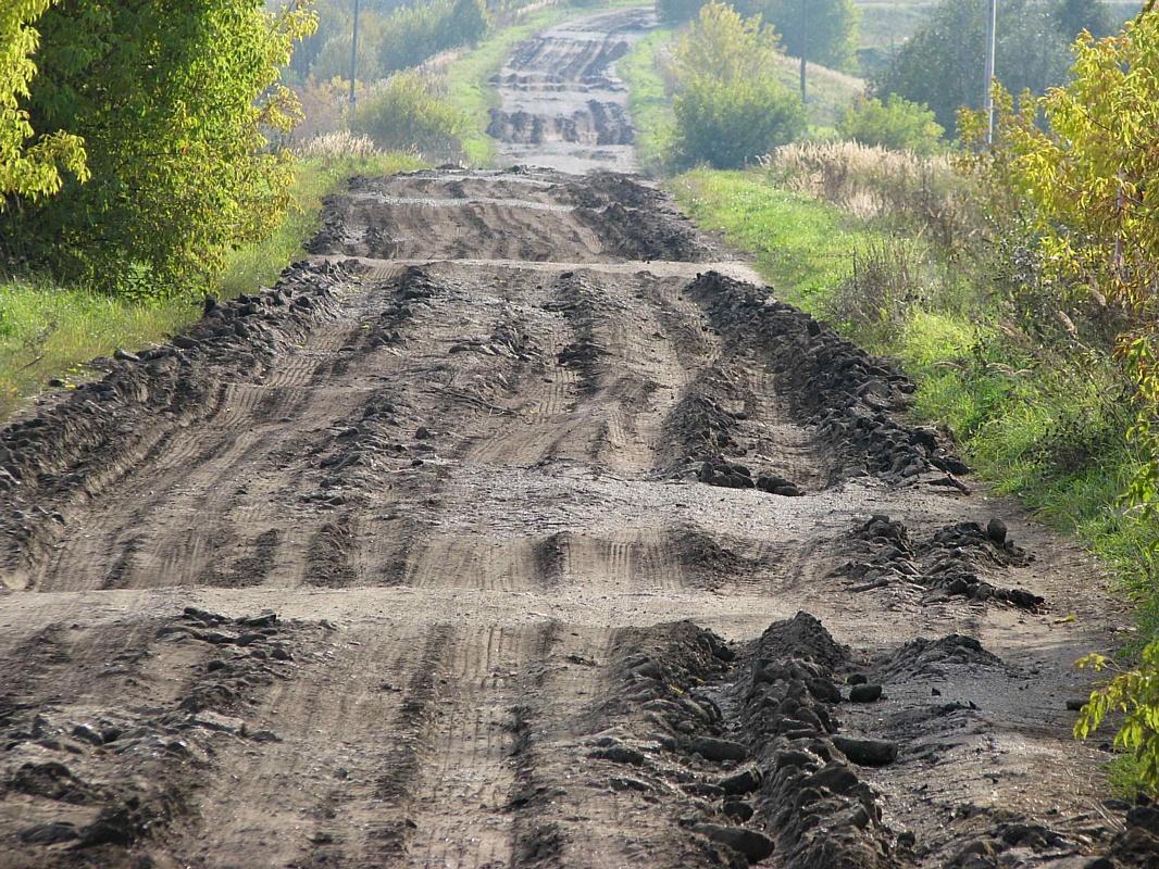 Кировские активисты ОНФ призывают не допустить уничтожения автомобильной дороги в Малмыжском районе