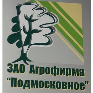 Открылся фестиваль-конкурс цветов в городе Раменское